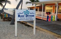 LC reef divers